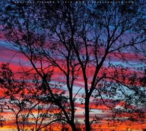 Intrappolare un tramonto